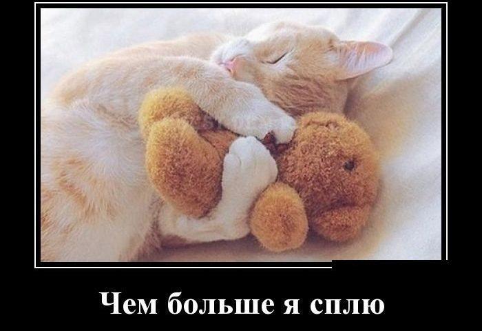 Подборка прикольных демотиваторов на тему сна.